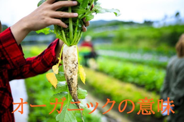 有機栽培・オーガニック野菜