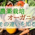 野菜の「無農薬栽培」と「有機栽培(オーガニック)」の違い【どっちを選べばいいのか?】