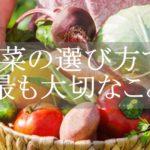 野菜の選び方【健康効果を得るための4つのポイント】