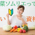 野菜ソムリエとは?【資格の取り方、費用、難易度について詳しく解説します】