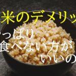 玄米にもデメリットがある!?【メリットを増やす食べ方を知っておきましょう】