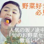 【野菜好き必見】坂ノ途中の定期宅配「旬のお野菜セット」の内容と感想
