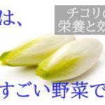 【おしゃれでカワイイ】チコリの栄養と効能、おすすめの食べ方を紹介