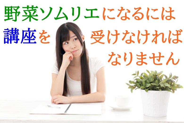 野菜ソムリエ 独学