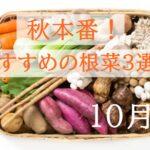 10月が旬の野菜【秋本番!栄養満点で美味しい根菜おすすめ3選!】